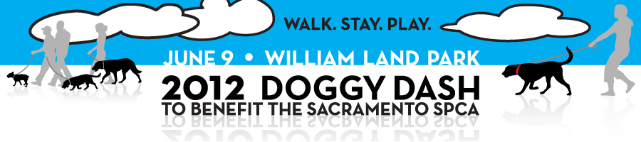 Support the SPCA and sign up for the Doggy Dash, June 9