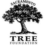 East Sacramento McKinley Park Trees — Tree Key and Event